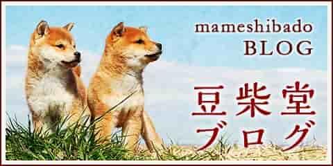 豆柴堂ブログ